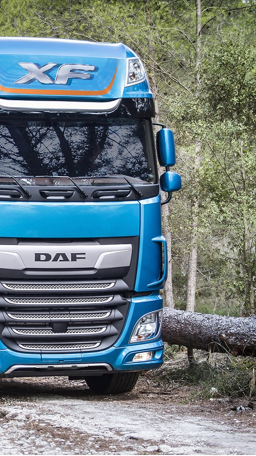 DAF-XF-530-FAT-6x4-2018098-1080